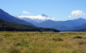 mountains, southern alps, new zealand, mccullaugh, south island, landscape, view, valley, meadow, grass, nature