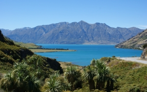 lake hawea, otago, new zealand, landscape, nature, mountains, lake, palms, view