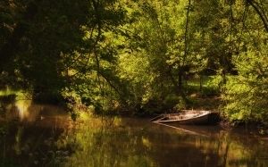 lake, boat, forest, river, nature, bank, summer, landscape, water, silent, green, bushes