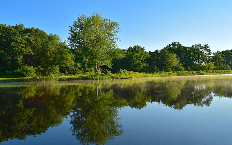 lake, forest, trees, water, reflection, nature, landscape, summer, outdoor, sky, blue, green, nature, sunrise, calm, morning