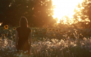 flowers, countryside, field, landscape, nature, outdoors, rural, scenic, sunset, woman, girl, grass, evening