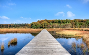fall, autumn, water, jetty, colorful, blue sky, season, lake, pier, nature, landscape, calm, forest, woods