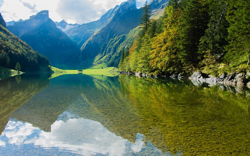 forest, lake, landscape, mountains, nature, outdoors, placid, reflection, river, scenic, summer, travel, trees, valley, woods