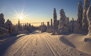 finland, lapland, wintry, skiing, trail, path, sun, sunset, winter, sunbeam, rays, snow, road
