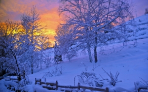 sunrise, sunset, snow, mountain, nature, winter, landscape, cold, snowy, trees, bare shaft, blue, hill