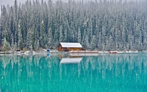 cabin, cold, environment, fir, trees, forest, lake, landscape, nature, river, scenery, scenic, season, snow, woods, water, wilderness, winter