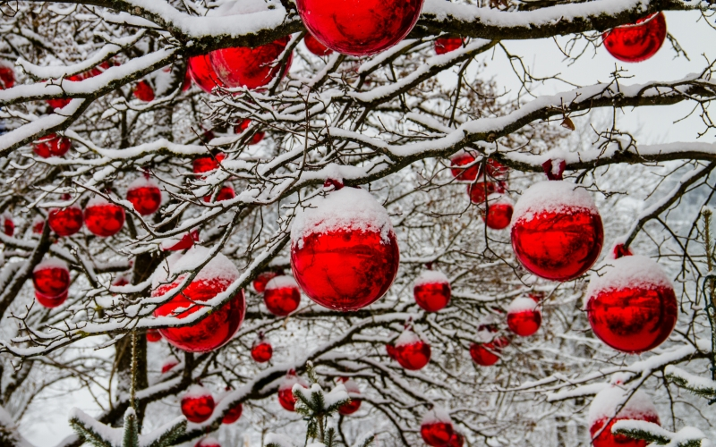 christmas, winter, tree, snow, balls, red, tree decorations, christmas balls, advent, decoration, xmas, holiday