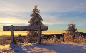 bench, clouds, sky, cold, nature, snow, sunrise, sunset, winter, landscape, trees