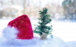 blur, celebration, xmas, christmas, christmas decoration, cold, december, fir, hat, holiday, new year, pine, santa, shining, snow, winter