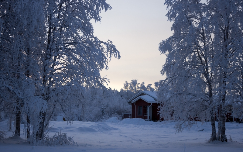 cold, frosty, frozen, house, icee, icy, landscape, nature, season, snow, snowdrift, trees, winter, woods, hut, shack