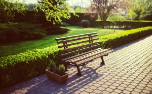 bench, flora, flowers, footpath, garden, grass, green, guidance, hedge, lawn, outdoors, park, path, seat, spring, trees, wood