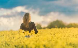 bloom, blossom, flowers, girl, female, people, field, sunset, woman, women, yellow