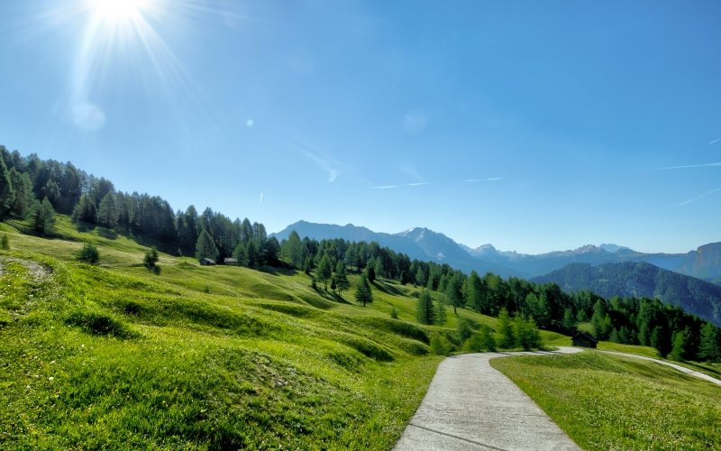 summer, spring, sun, sky, nature, landscape, trees, path, trail, hiking, trekking, blue, mountains, green