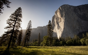 yosemite, el capitan, mountains, national park, rock, high, landscape, granite, forest, wood, yosemite, el capitan