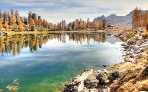 autumn, trees, forest, wood, lago federa, bergsee, dolomites, landscape, alpine, nature, lake, italy, mountains, panorama, belluno, alm, mountain landscape, karg