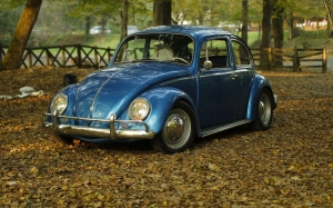 car, vintage, park, leaves, autumn, classic, oldtimer, beetle, volkswagen, vw, auto, vehicle, fall, foliage