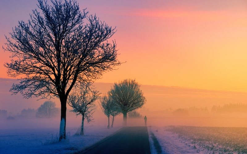 morning, winter, fog, dawn, sunset, nature, landscape, jogger, road, away, path, trees, twilight, evening, sky, cold, snow, sky