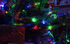 christmas tree, home, christmas eve, christmas, xmas, new year, holiday, lights