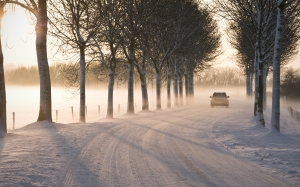landscape, nature, car, road, fog, frost, cold, sunset, snow, trees, december