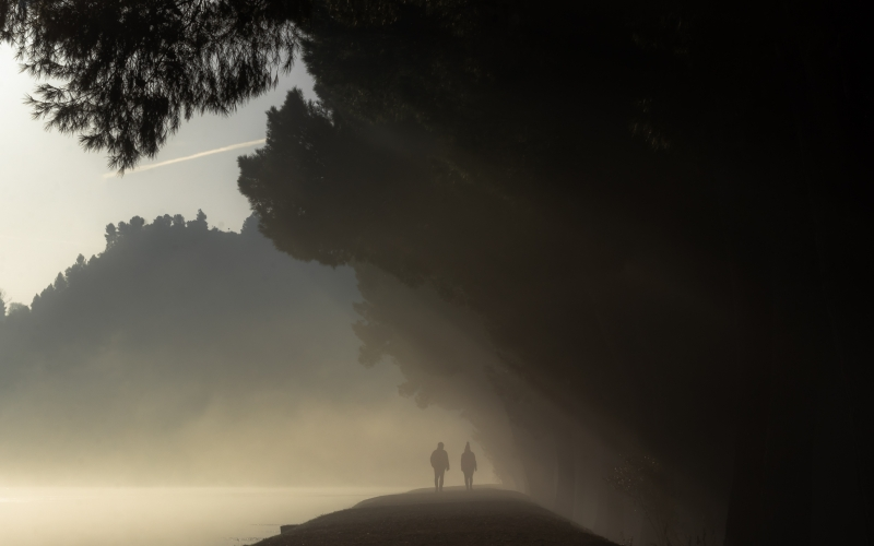 figures, people, outdoor, nature, fog, mist, morning, evening