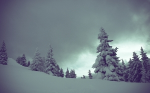 winter, mountains, snowy, alpin, landscape, trees, clouds, evening, nature