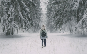 winter, girl, man, forest, wood, trees, snow, back