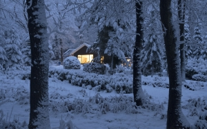 snow, winter, woods, forest, trees, landscape, nature, evening, house, lights, window, warmth, home, christmas, christmastime, xmas
