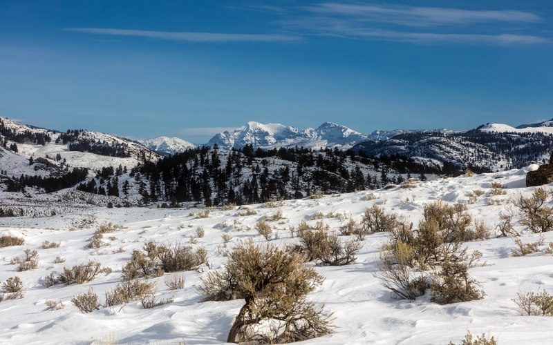 landscape, nature, forest, wilderness, mountains, snow, winter, meadow, countryside, valley, mountain range, travel, scenic