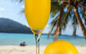 beach, beverage, citrus, closeup, drink, fresh, fruit, glass, healthcare, juice, orange, summer, tasty, tropical, vitamin, cocktail