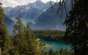 arnisee lake, switzerland, mountains, forest, wood, trees, spruce, fir, summer, landscape, nature