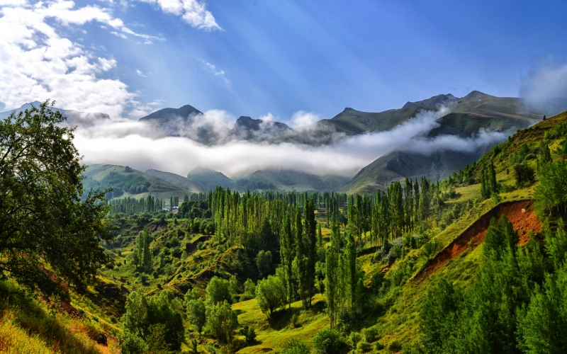 fog, nature, landscape, mountains, clouds, highland, travel, summer, great, season, dawn, sunrise, sky, stunning, horizon