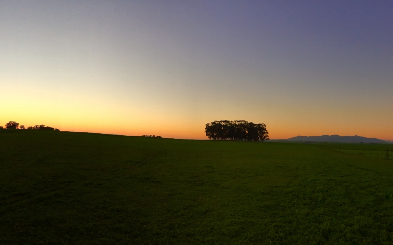 landscape, trees, nature, grass, horizon, light, sky, sunset, field, farm, meadow, prairie, countryside, panorama, dusk, evening, outdoors