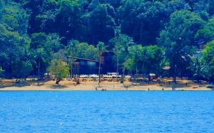 paradise, beach, patong, december, summer, blue, water, sea, ocean, palms, green, sunny, sand, nature, landscape, resort, vacation, relax