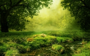 fairy, composing, glade, forest, meadow, trees, green, nature, mystical, mood, creek, flow