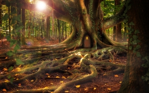 magic, fairy, treehouse, forest, composing, fantasy, landscape, nature, wood