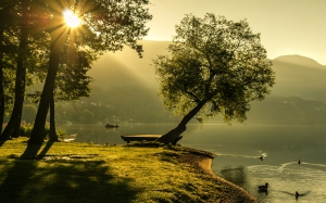landscape, summer, sunrise, lighting, sun, nature, lake, scenic, carinthia, trees, bank, water, ducks