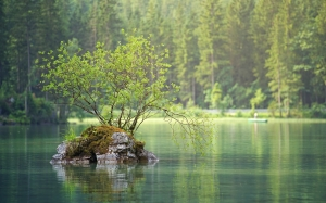 nature, lake, river, water, landscape, forest, trees, summer, green, coniferous, wood, idyllic, calm