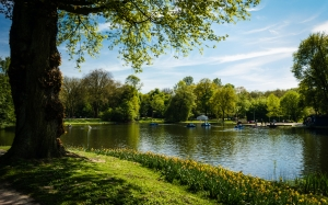 nature, boats, grass, lake, landscape, outdoors, park, river, scenic, trees, water, watercrafts