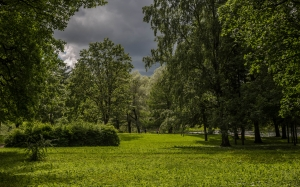 before, storm, rain, landscape, park, clouds, sky, trees, city, trees, summer, nature