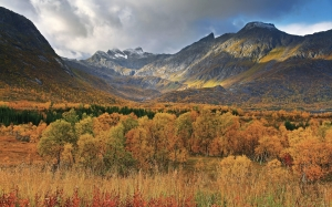 autumn, view, gullesfjordbotn, troms, norway, september, landscape, mountains, forest, nature