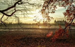 trees, nature, branches, sunset, sunlight, morning, leaf, dawn, dusk, pond, evening, autumn, park, castle, season, germany, saxony, dresden, park, palace, landscape