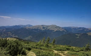 mountains, forest, green, landscape, nature, outdoor, summer, spring, sky